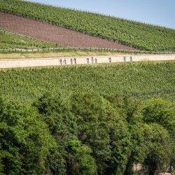 Gran-Fondo-Schleck-Luxemburg-1